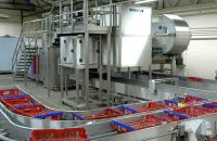 Basket feed conveyor
